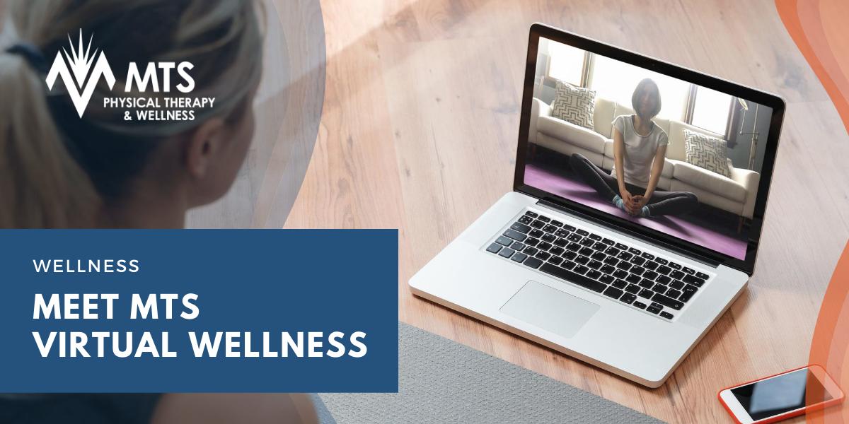 Meet MTS Virtual Wellness Classes
