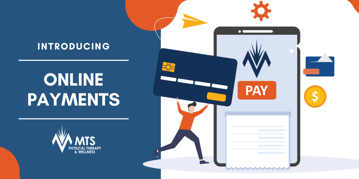 Introducing MTS Online Payments